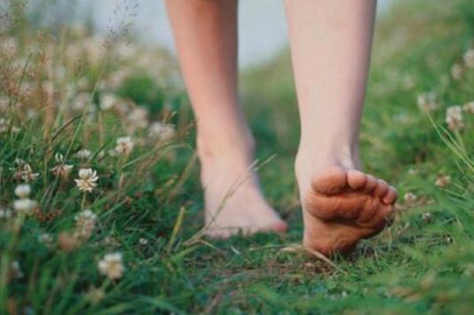 关于情感的句子 看到人们面前的花开花落