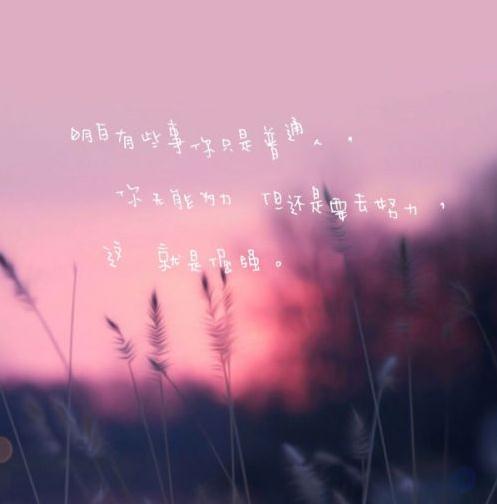 抖音经典搞笑语录 我们看同样的风景和日落