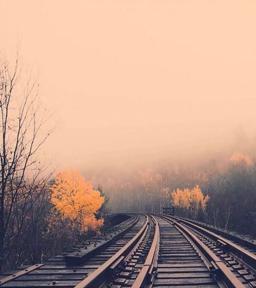 人生励志语录写给自己 认为自己能做的和不能做的