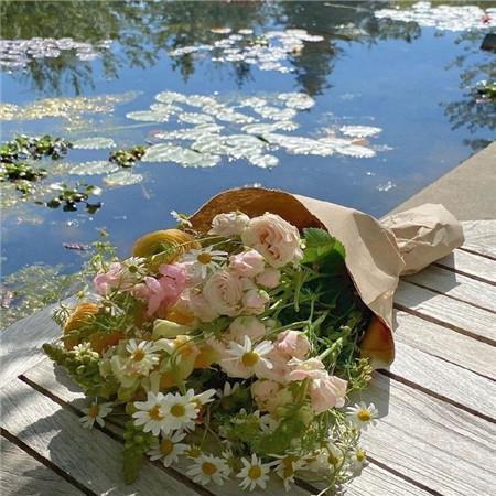 关于捡贝壳的优美句子 描写贝壳美丽的句子